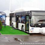 «Львиный» прайд на автобусном фестивале