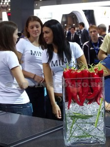 mias_2012_leokuznetsoff_img_0351