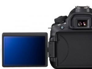 eos60d-back