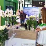 Открытие обновленного дилерского центр Skoda РОЛЬФ Магистральный в Москве - 3