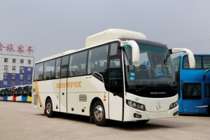 golden-dragon-6957cng