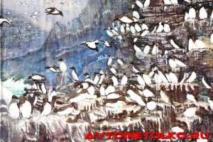 muzej_arktiki_02_2017_leokuznetsoff_img_5819