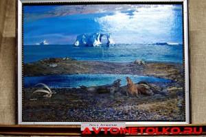 muzej_arktiki_02_2017_leokuznetsoff_img_5963